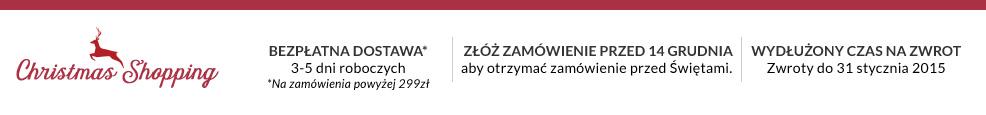 Xmas_campaigns_pl