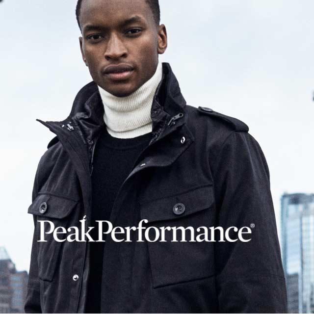 Image_logo_peak_m