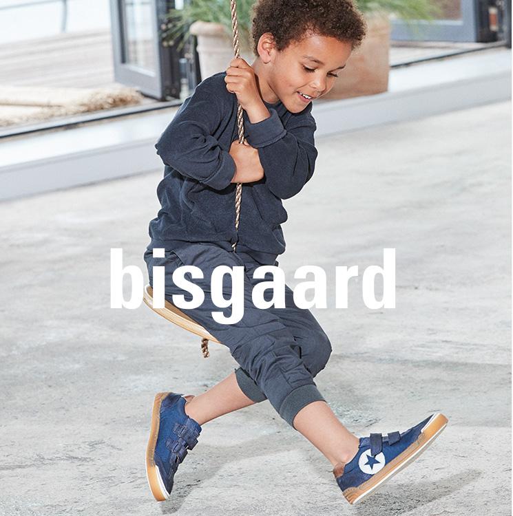 W5_k_4c_biisgaard