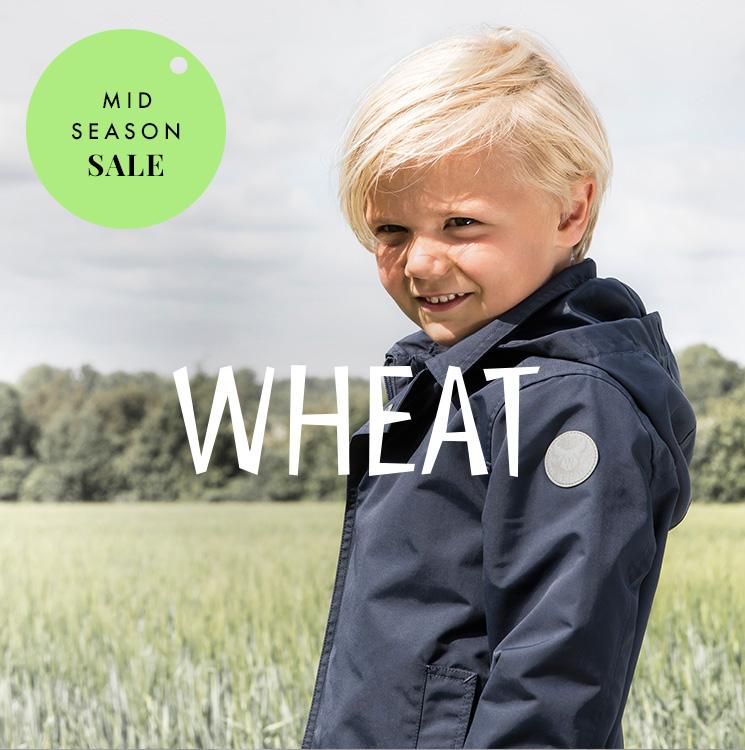 W17_k_mss_4a_wheat