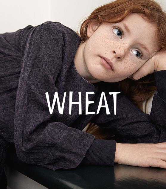 W33_k_3b_wheat