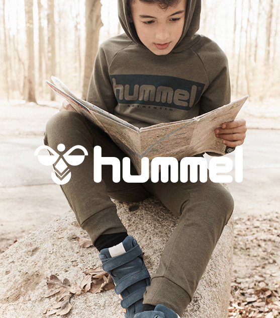 Bmp_3a_hummel_k
